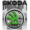 Ремонт автомобилей Skoda